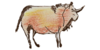 Logo van Ontspanningstraining Hans van Os