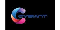 Logo van Cybiant