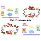 Thumbnail xml150 xml fundamentals