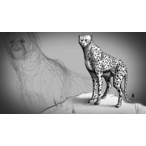 Thumbnail fundamentals drawing animal anatomy 542 v1