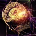 Thumbnail cropped brain photo