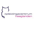Thumbnail och logo voor springest